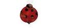 Ladybird Pest Control