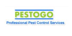 Pestogo