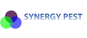 Synergy Pest Management